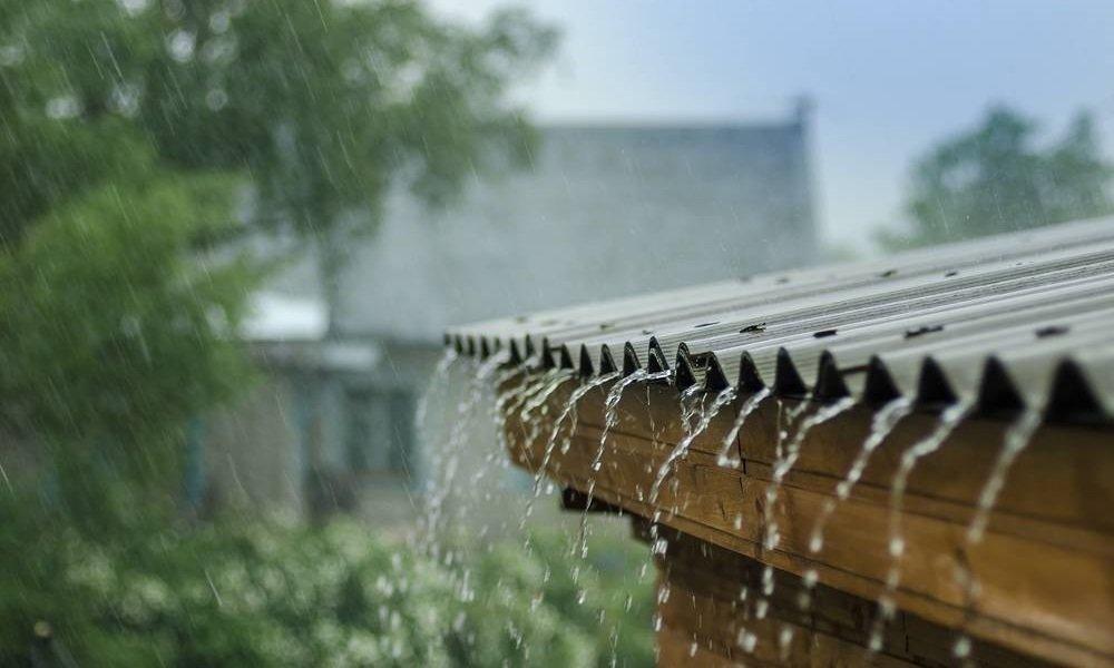 Rainfed Area Development Programme