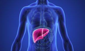 National Viral Hepatitis Surveillance Programme