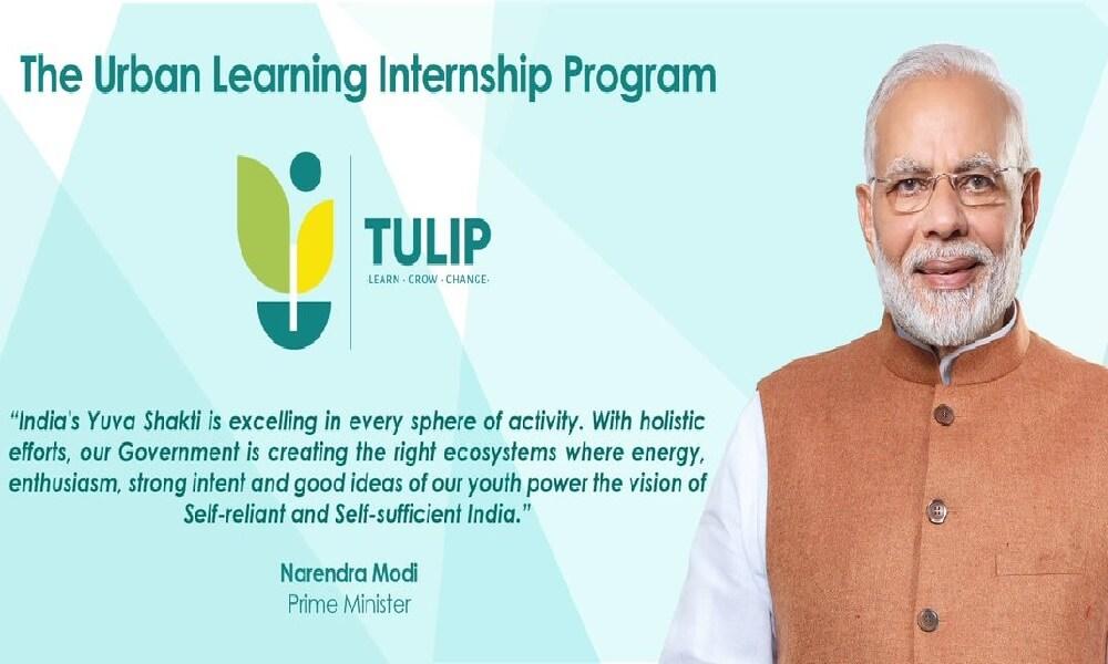 Tulip Internship