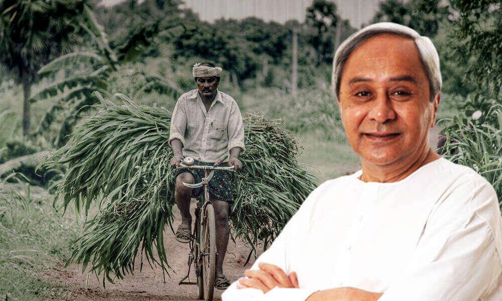 Odisha Balaram Scheme