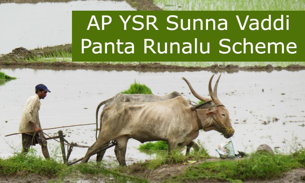 AP YSR Sunna Vaddi Panta Runalu Scheme