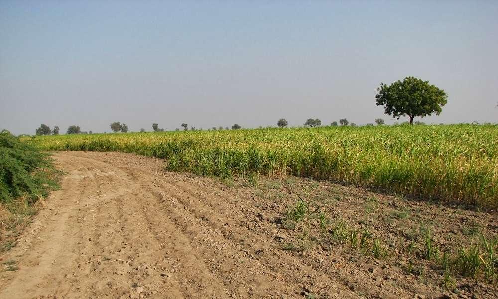 Telangana Non Agricultural Property Registration