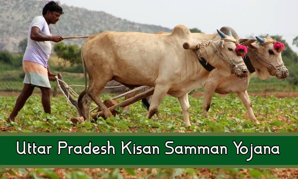 Uttar Pradesh Kisan Samman Yojana