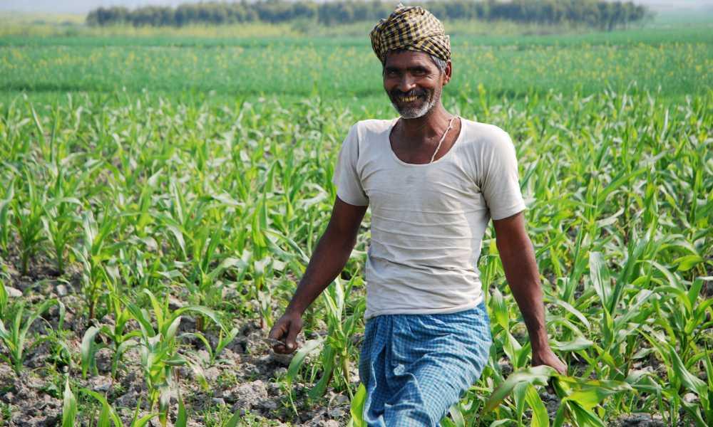 Free Farm Loan Scheme