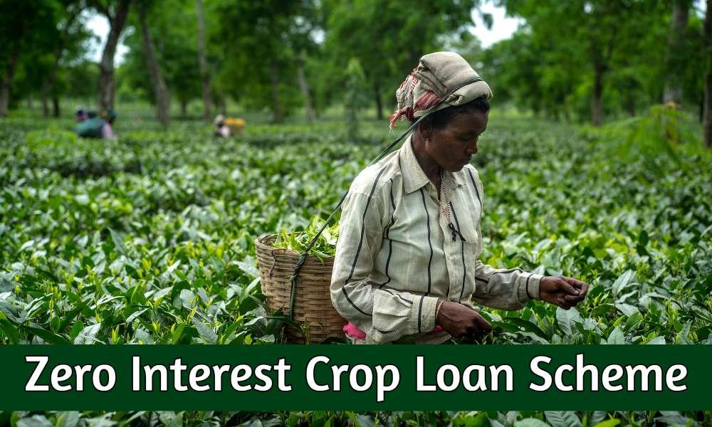 Zero Interest Crop Loan Scheme